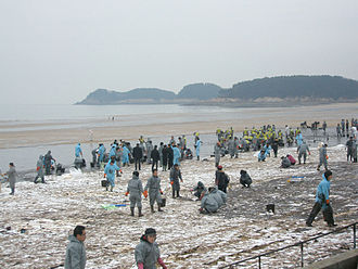 2007 South Korea oil spill - Volunteers cleaning up