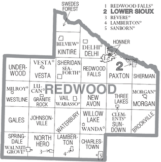 Willow Lake Township, Redwood County, Minnesota Township in Minnesota, United States