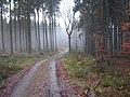 Maschberg-Wittekindsweg (1).jpg