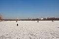 Maschsee im Winter IMG 3639.jpg