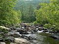 Maury River.JPG
