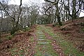Meavy, inclined plane - geograph.org.uk - 653515.jpg