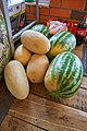Melons and Watermelons.jpg
