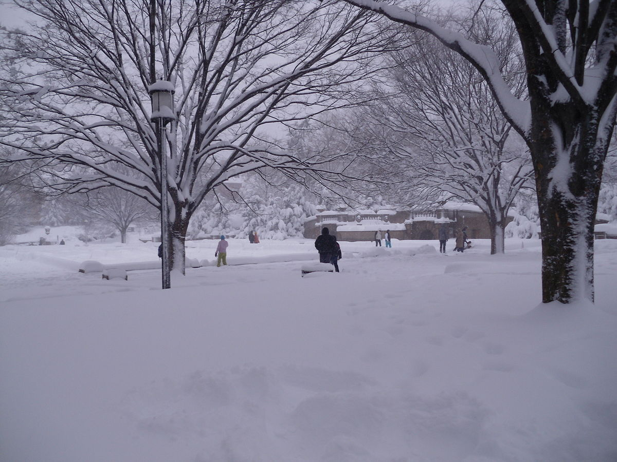 File:Meridian Hill Park in Snow.JPG - Wikimedia Commons