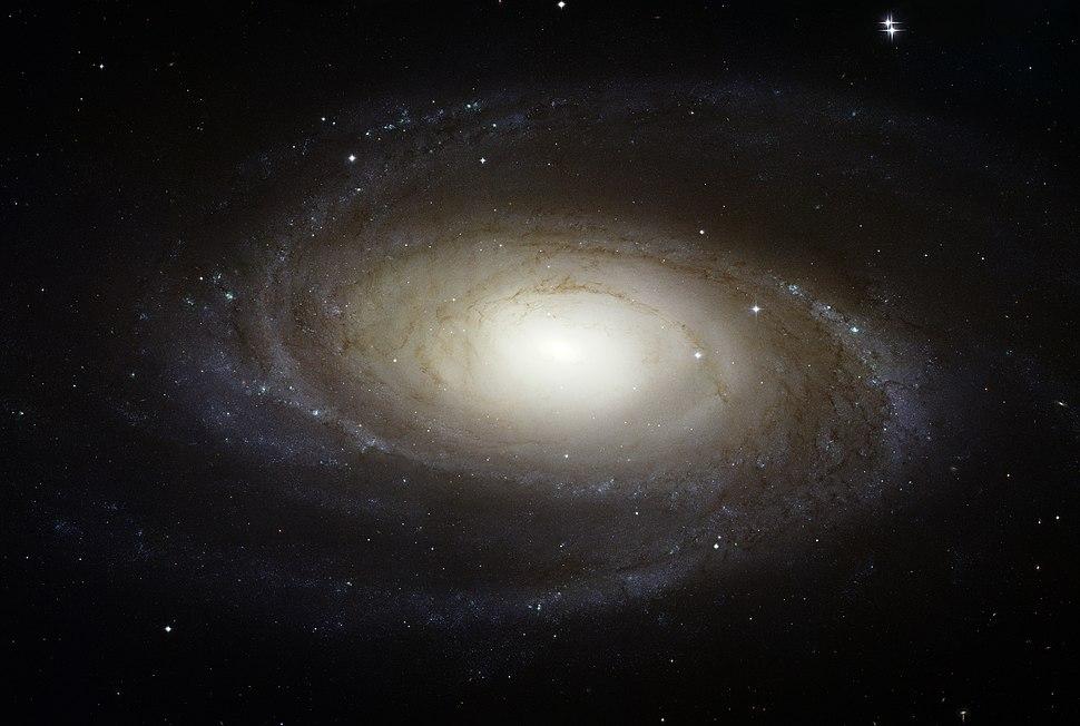 Messier 81 HST