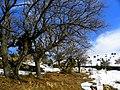 Mezarlıktan - panoramio (2).jpg