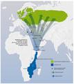 Migrația privighetorii de zăvoi.png