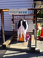 Milking experience machine in Nagoya Agricultural Center.jpg