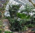 Miyazaki prefecture's Subtropical crop experimental farm. , 宮崎県総合農業試験場 亜熱帯作物支場 - panoramio (5).jpg