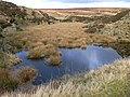 Moorland pool - geograph.org.uk - 600618.jpg