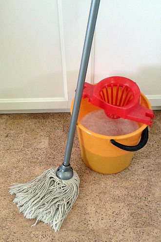 https://upload.wikimedia.org/wikipedia/commons/thumb/6/63/Mop_and_bucket.jpg/330px-Mop_and_bucket.jpg