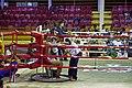 Muay Thai Ao Nang 8.jpg