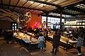 Museum voor Natuur wetenschappen Brussel - zaal 5.jpg