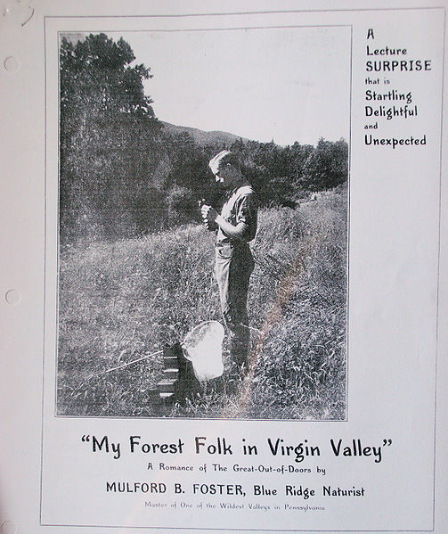 File:My Forest Folk Mulford Foster.jpg