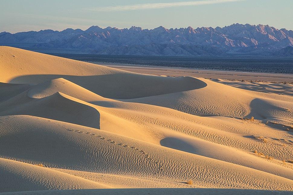 My Public Lands Roadtrip- Cadiz Dunes Wilderness in California (18720555819)