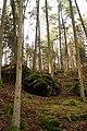 Nähe Reichenbach - panoramio (5).jpg