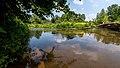 NSG Rurauenwald-Indemuendung FFH-Gebiet Indemündung Sandbank mit Ufervegetation XI.jpg
