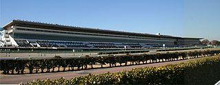 Nakayama Racecourse horse racing venue