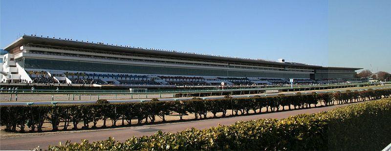 Nakayama Racecourse01.jpg