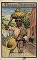 Nassau, Bahamas, Woman, fruit on head, hat in hand (NBY 23500).jpg