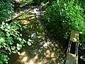 Naturdenkmal Hasequelle Wellingholzhausen Melle -Quelle direkt- Datei 1.jpg