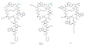 Daptomycin - Image: Nbt 1265 F2