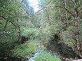 Near Delta Campground (7967340776).jpg
