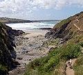 Near Pentireglaze, Cornwall - geograph.org.uk - 1091344.jpg