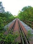 Nebenbahn Finnentrop-Wenholthausen (5778050920).jpg