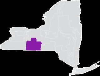 New Yorks 58th State Senate district American legislative district