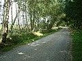 Newman's Lane, West Moors - geograph.org.uk - 28504.jpg