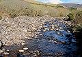 Nire River - geograph.org.uk - 2340495.jpg