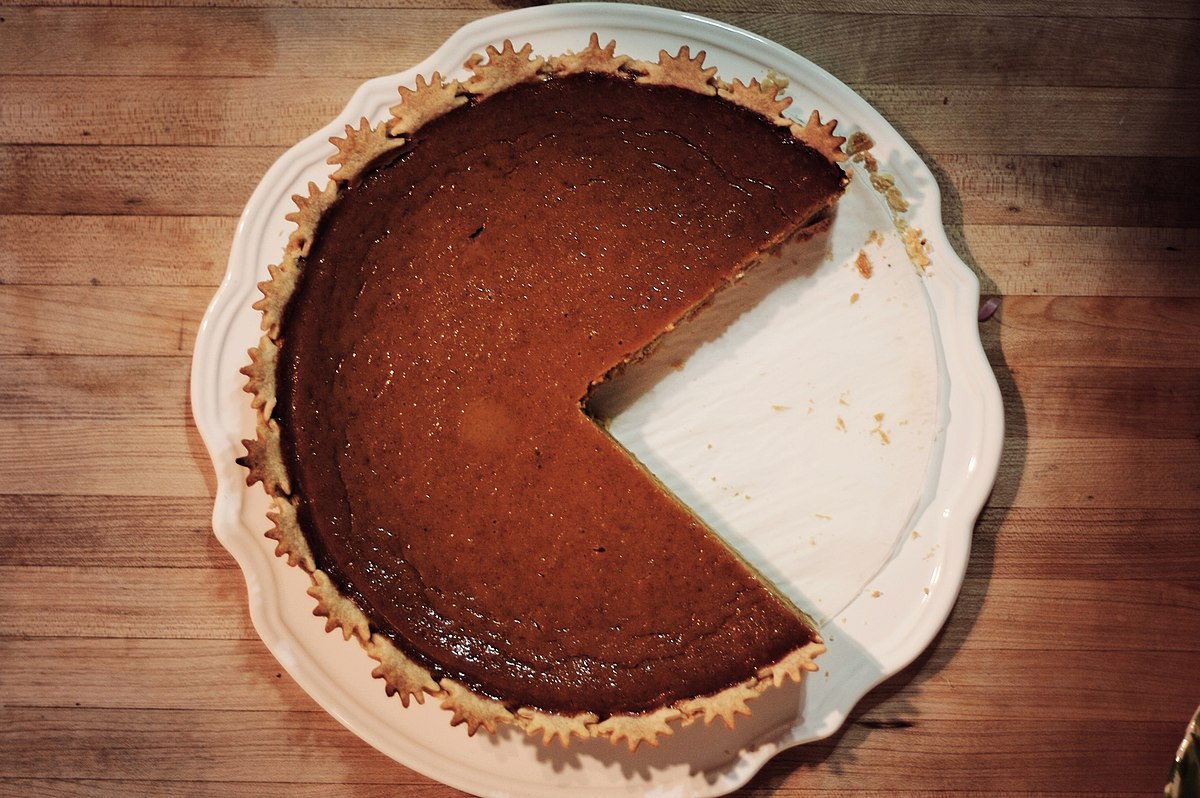 dog ate pumpkin pie