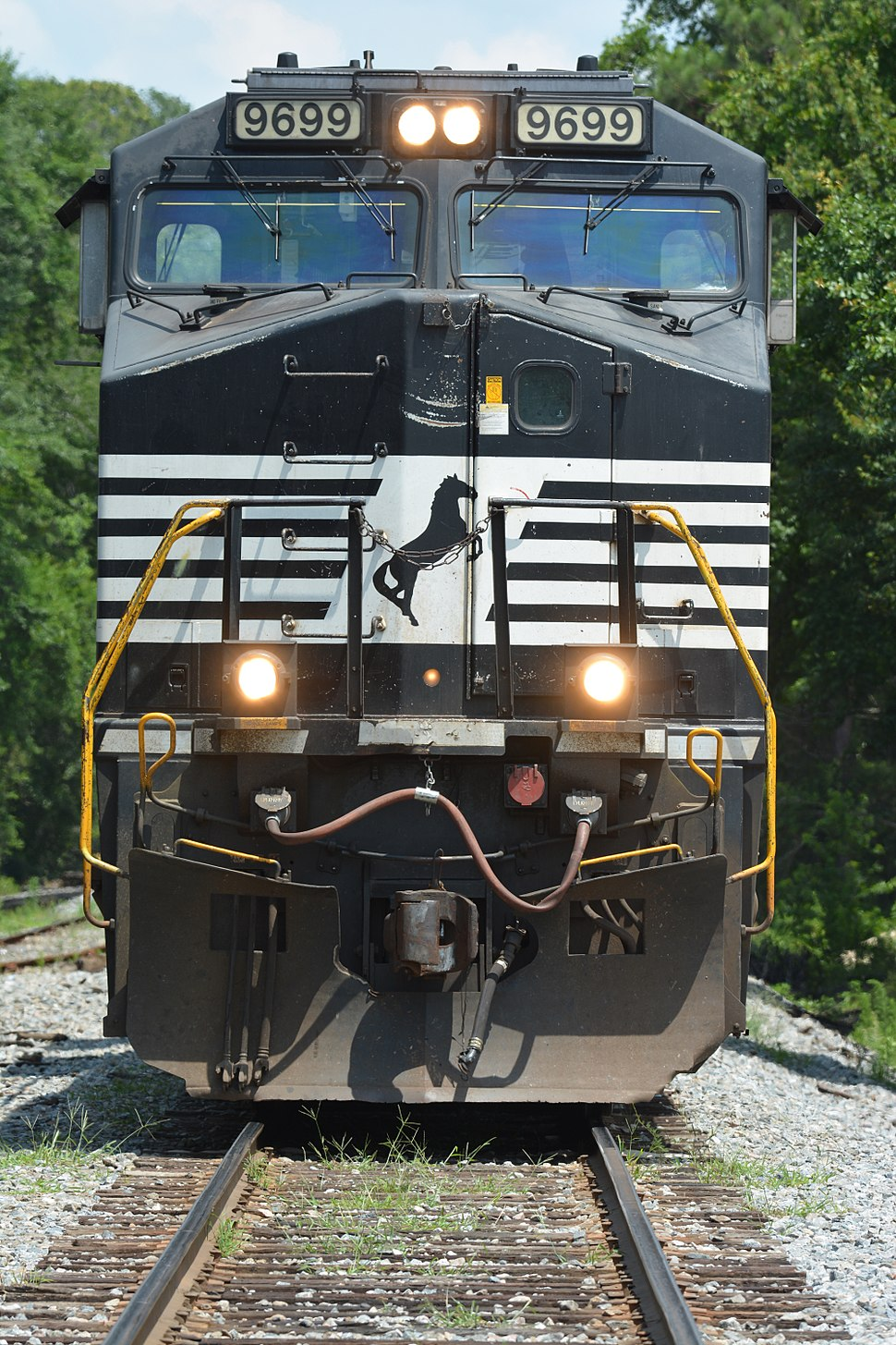 Norfolk Southern Railway Howling Pixel