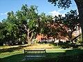 Norman, OK, USA - University of Oklahoma - panoramio (10).jpg