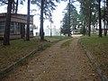 Ośrodek wypoczynkowy Kormoran w Czarnej Wsi - panoramio (21).jpg