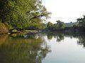Obion River swimming hole.jpg