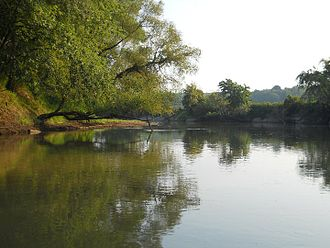 Obion River - Local swimming hole on Obion River in West Tennessee