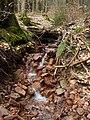 Odenwald - Hahnengraben 2013-03-10 17-06-11.JPG