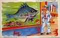 Oh Boy! What Big Fish They Have Here. Shedd Aquarium, Chicago World's Fair 1933 (NBY 428718).jpg