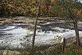Ohiopyle fall colors - panoramio (6).jpg
