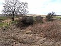Old railway cutting at Barrasford - geograph.org.uk - 1175703.jpg
