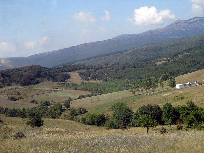 File:Olive groves, Bursa countryside - بساتين زيتون، ريف بورصة.jpg