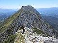 On the Piatra Craiului ridge (30896068318).jpg