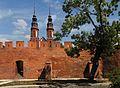 Opole - mury obronne i widok na katedrę.jpg