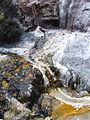 Orakei Geyser (6995781489).jpg