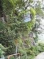 Otokoro, Itoigawa, Niigata Prefecture 949-0464, Japan - panoramio (3).jpg