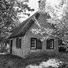 overzicht van rietgedekt huis bij eendenkooi - ameide - 20008386 - rce