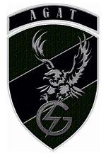 Oznaka rozpoznawcza agat mundur wyjsc.JPG