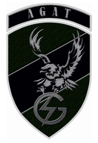 Polish Special Forces - JW AGAT shoulder patch.